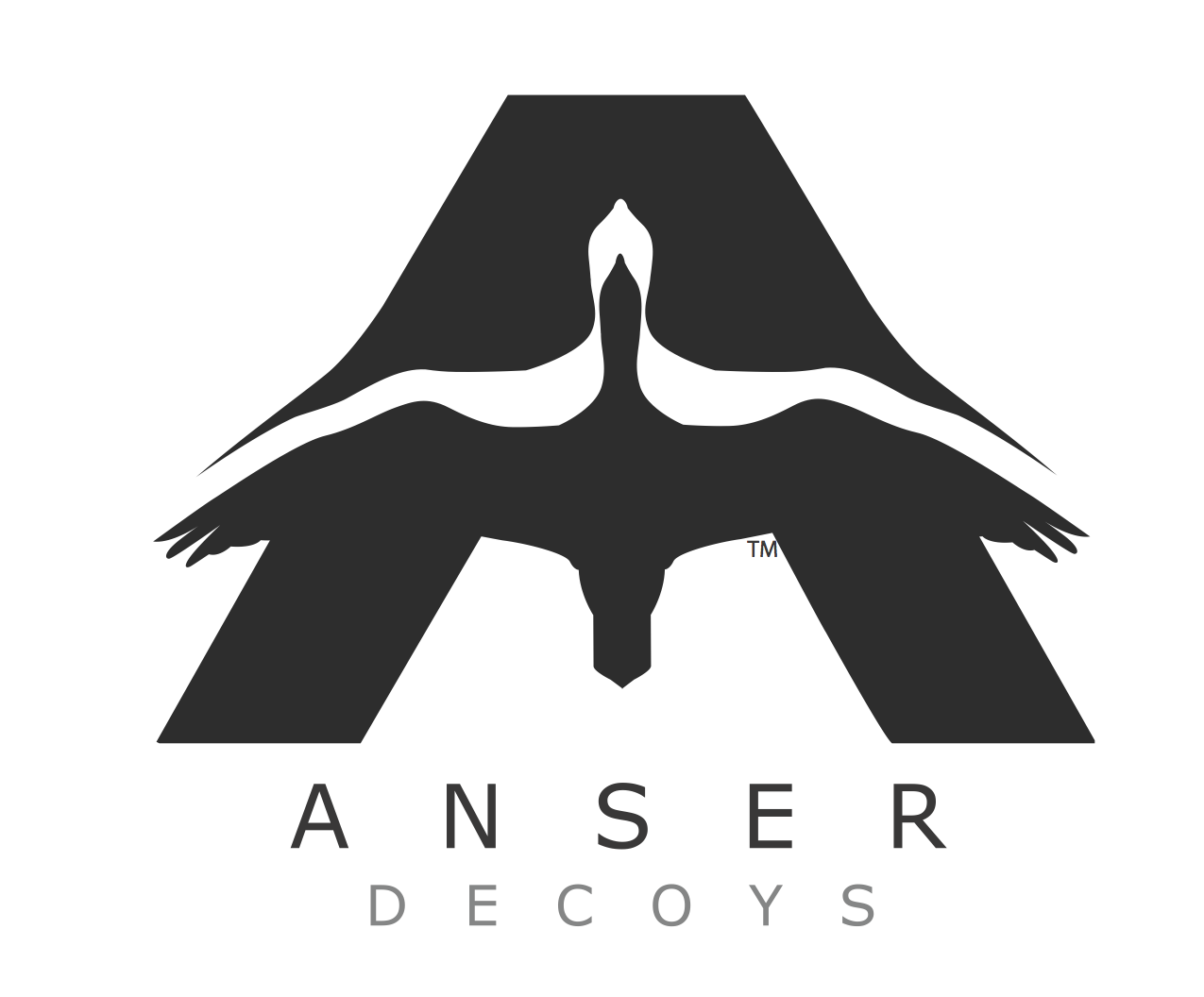 Anser Decoys